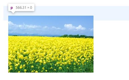 SANGO(Wordpressテーマ)で、ボックスからはみ出る時は中央揃えしよう