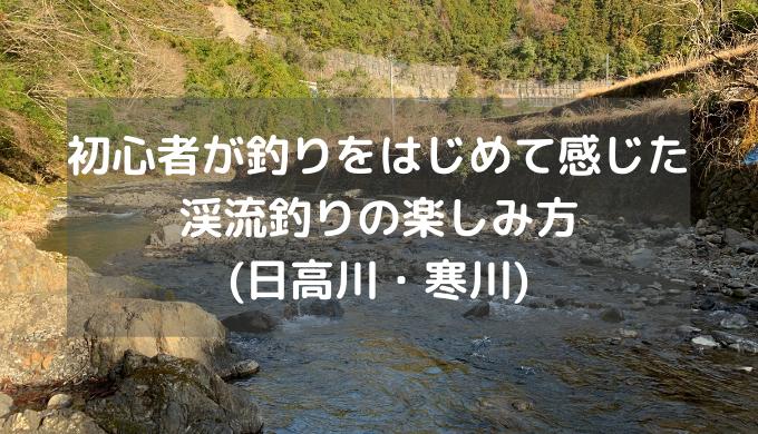 初心者が釣りをはじめて感じた渓流釣りの楽しみ方(日高川・寒川)