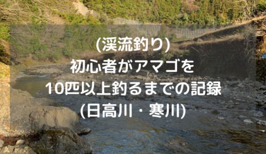 (渓流釣り)初心者がアマゴを10匹以上釣るまでの記録(日高川・寒川)